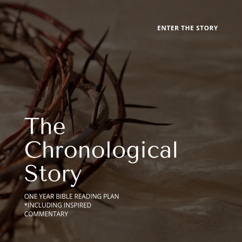 - If you are pretty familiar with the bible or have read the The Old & New Testament plan, then try reading chronologically as the story unfolds in The Chronological Story plan! Then get even deeper insights into the scriptures you're reading with the gospel saturated, inspired commentary from the selected Conflict of the Ages reading.