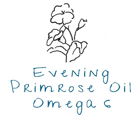 Evening Primrose Oil.png