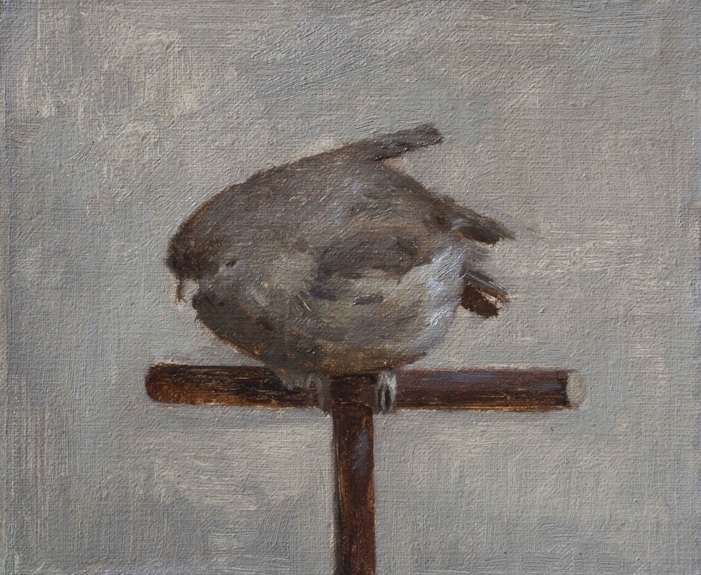 Little Sparrow. Oil on Panel. 4x5