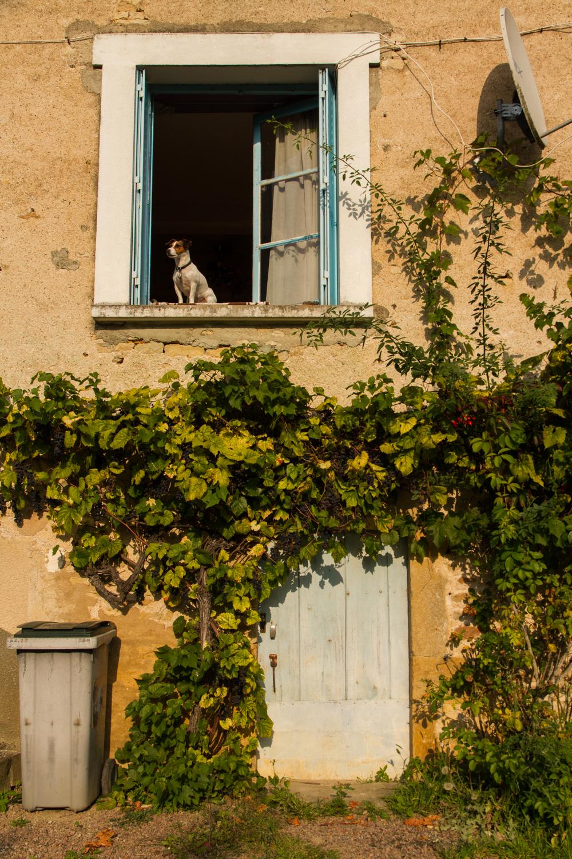 Saint-Père, Bourgogne