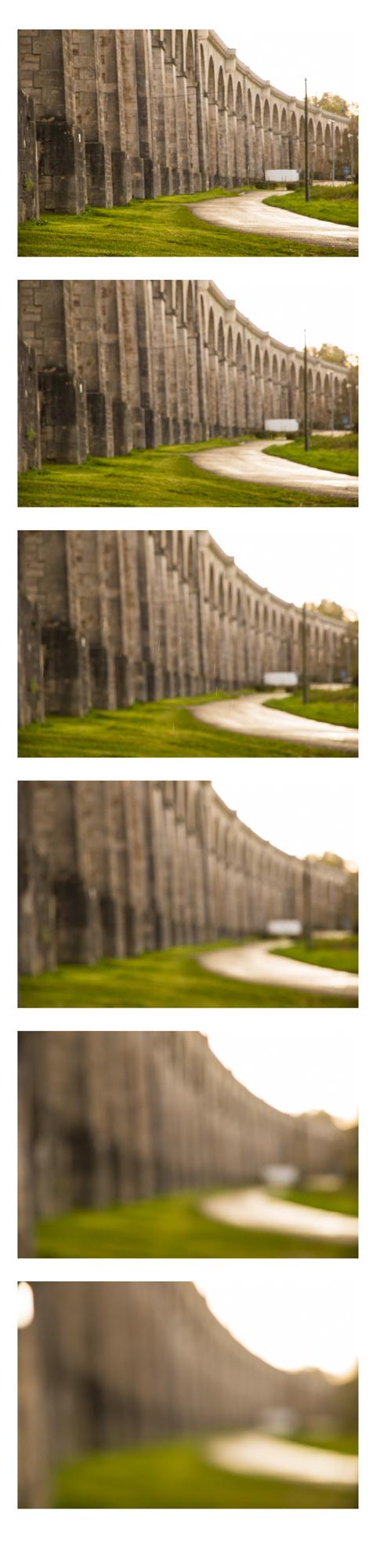 out focus 2.jpg