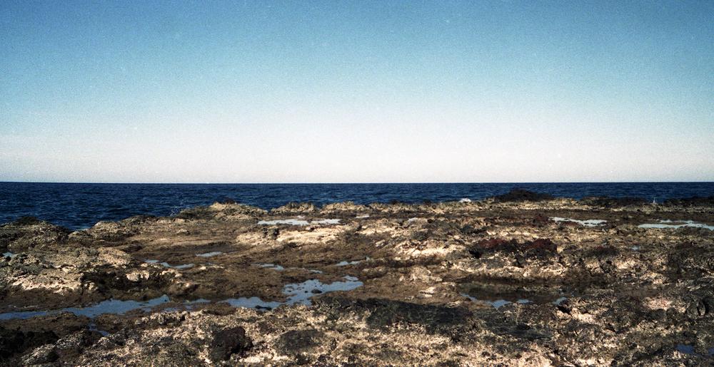 _horizon1.jpg