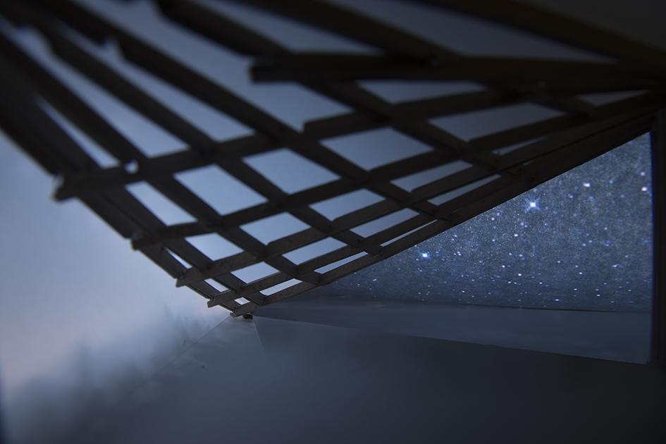 stargazer at night.jpg
