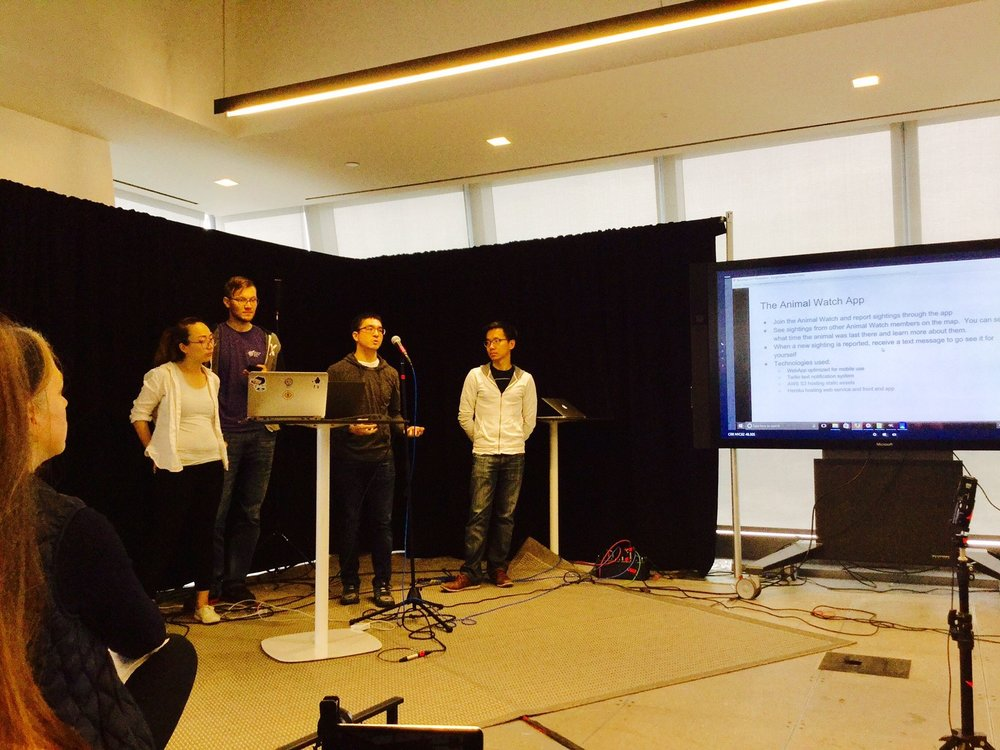 Space Apps Collaboration Womensphere 31.jpg