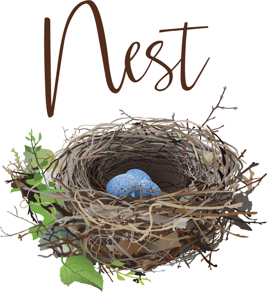 nest-logo-final copy.jpg