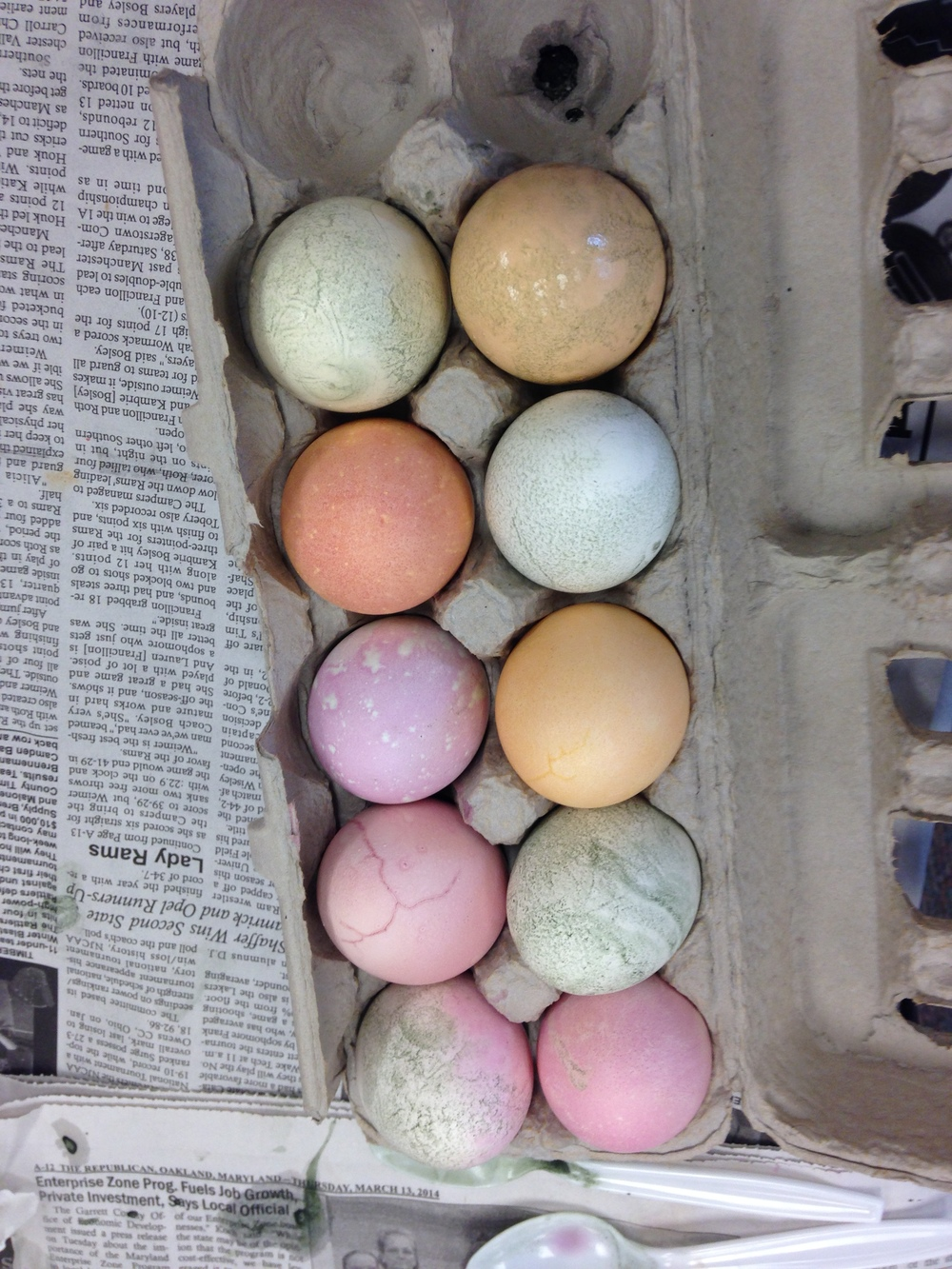 Natural Easter Egg Dying at the Nature Center