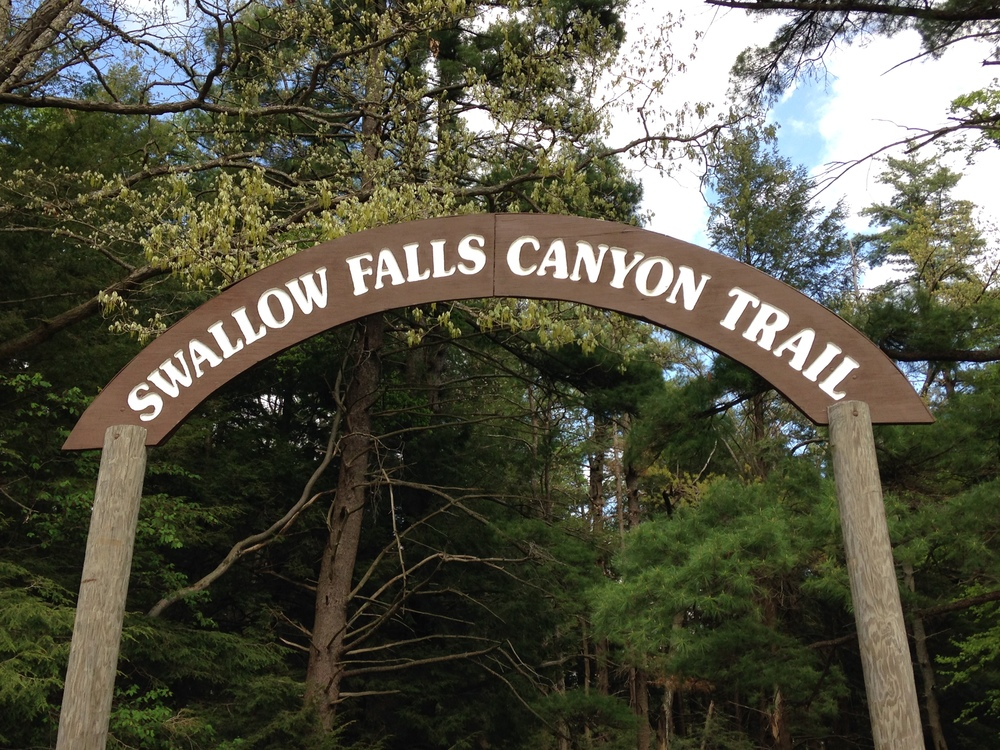 A Trip to Swallow Falls