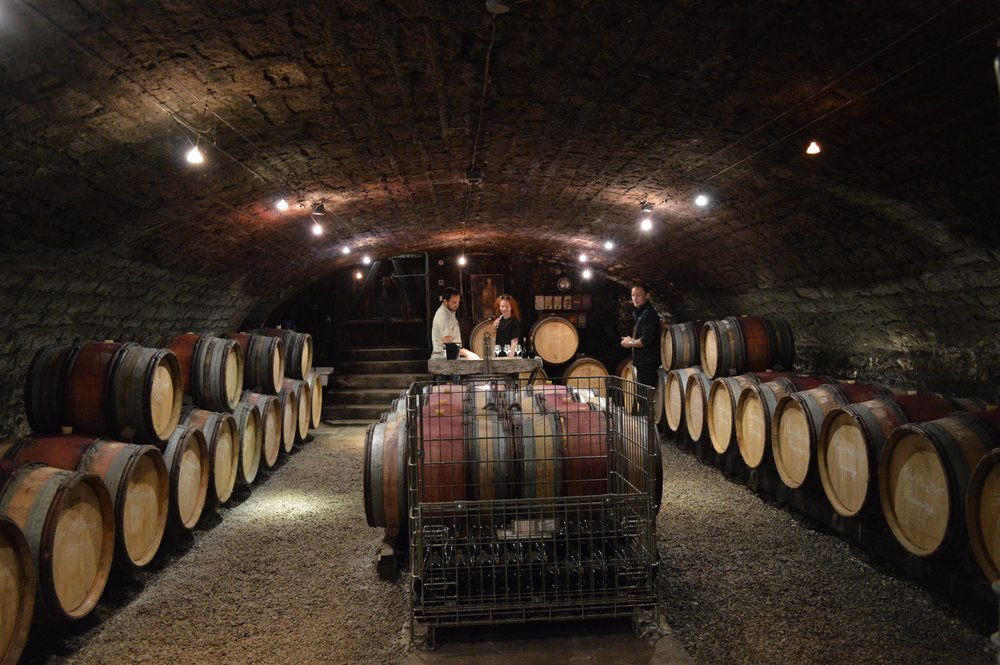 The cellar of Stephane Magnien in Morey-Saint-Denis.