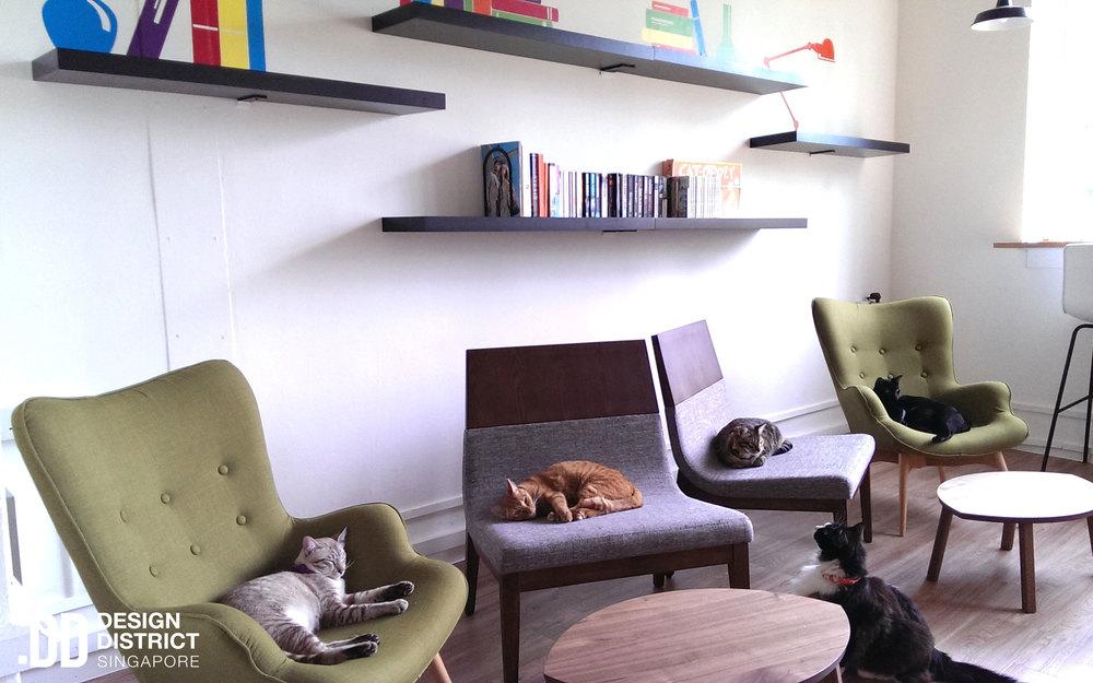 Cat Cafe Neko No Niwa - Design District.jpg