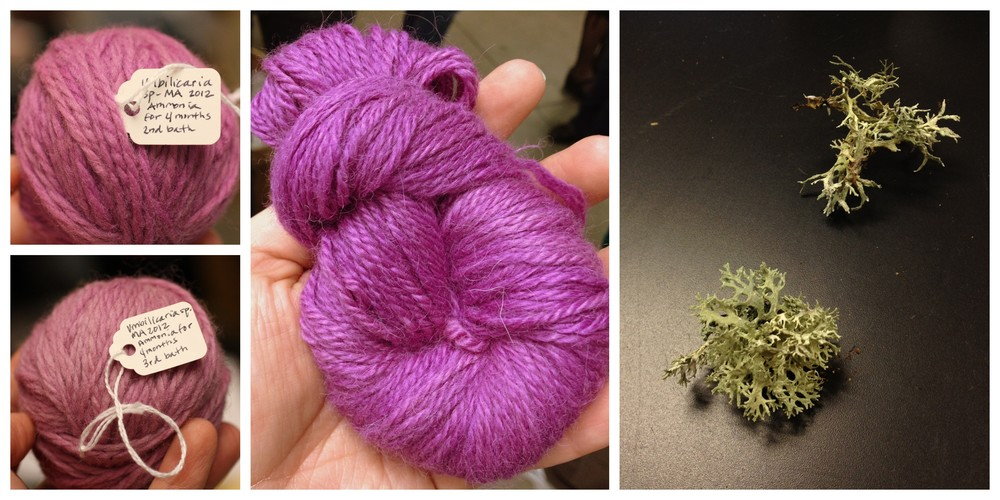 "A closer look at some of the different colors you can create! These beautiful purples were made using a lichen called Umbilicaria. This is an east coast lichen, so in class to make a purple color, we used a local lichen called Evernia prunastri. (Interesting additional use for this lichen: it is also used as a perfume fixative and base note! Per Wikiepedia, ""The lichen has a distinct and complex odor and can be described as woody, sharp and slightly sweet."")"