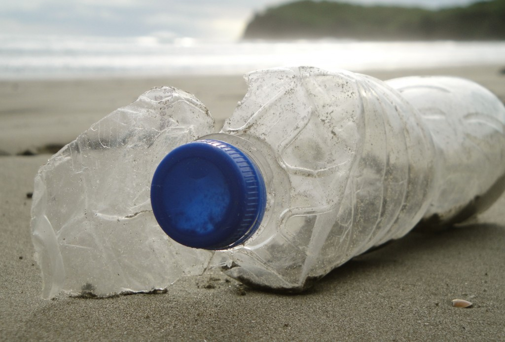 marine plastic pollution