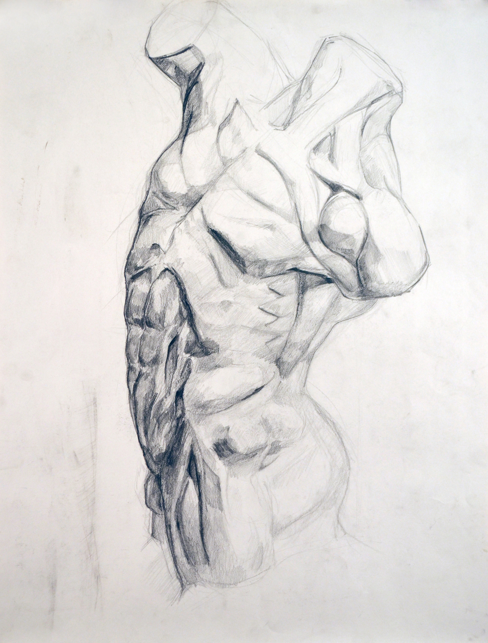 Highschool Anatomy and Structure figure drawing