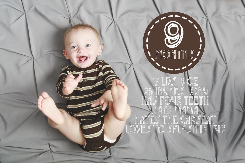 9 months old P.jpg