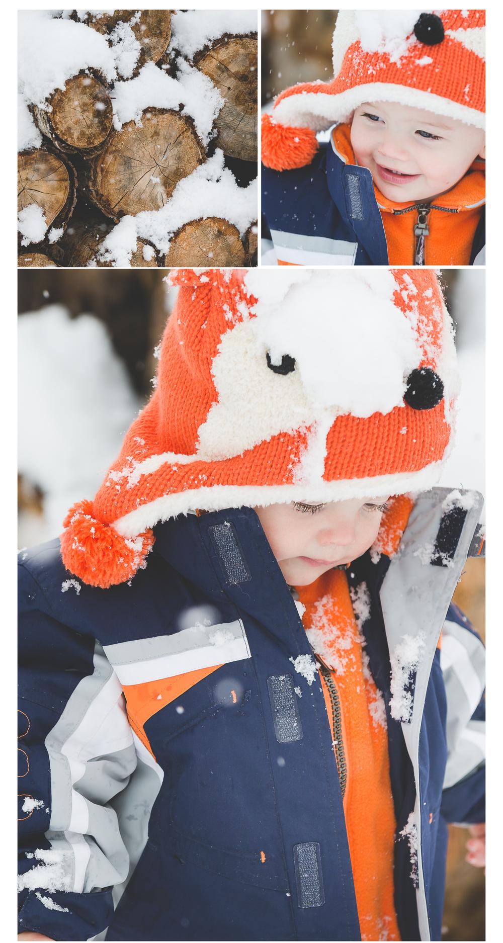 snowy-blog -1.jpg