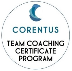 circle - team coaching certificate program-250.jpg