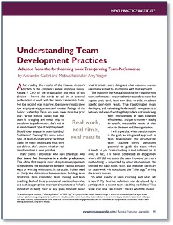 Article in Mobius Strip  Understanding Team Development Practices   click here for the .pdf