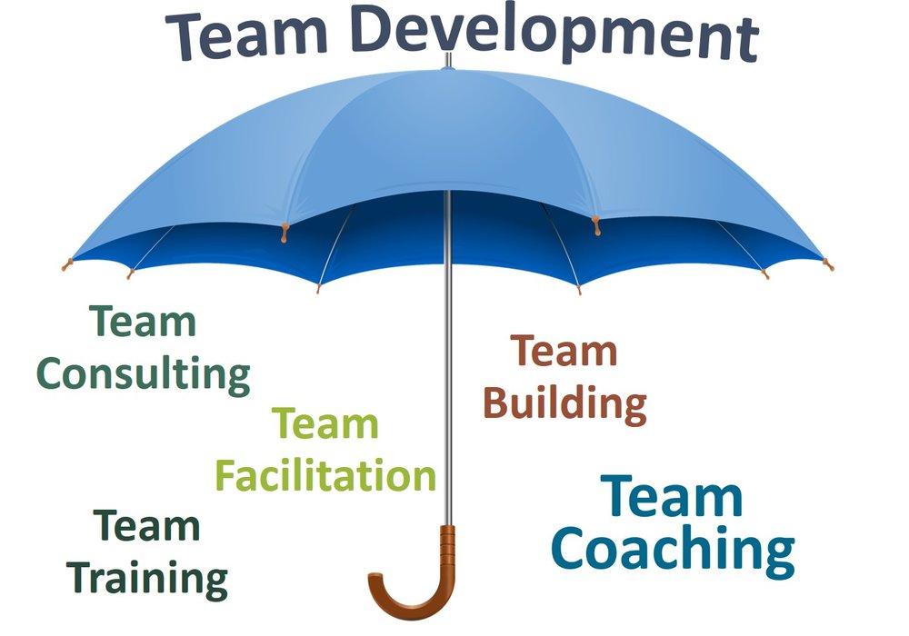 Team Development Modalities - Umbrella.jpg