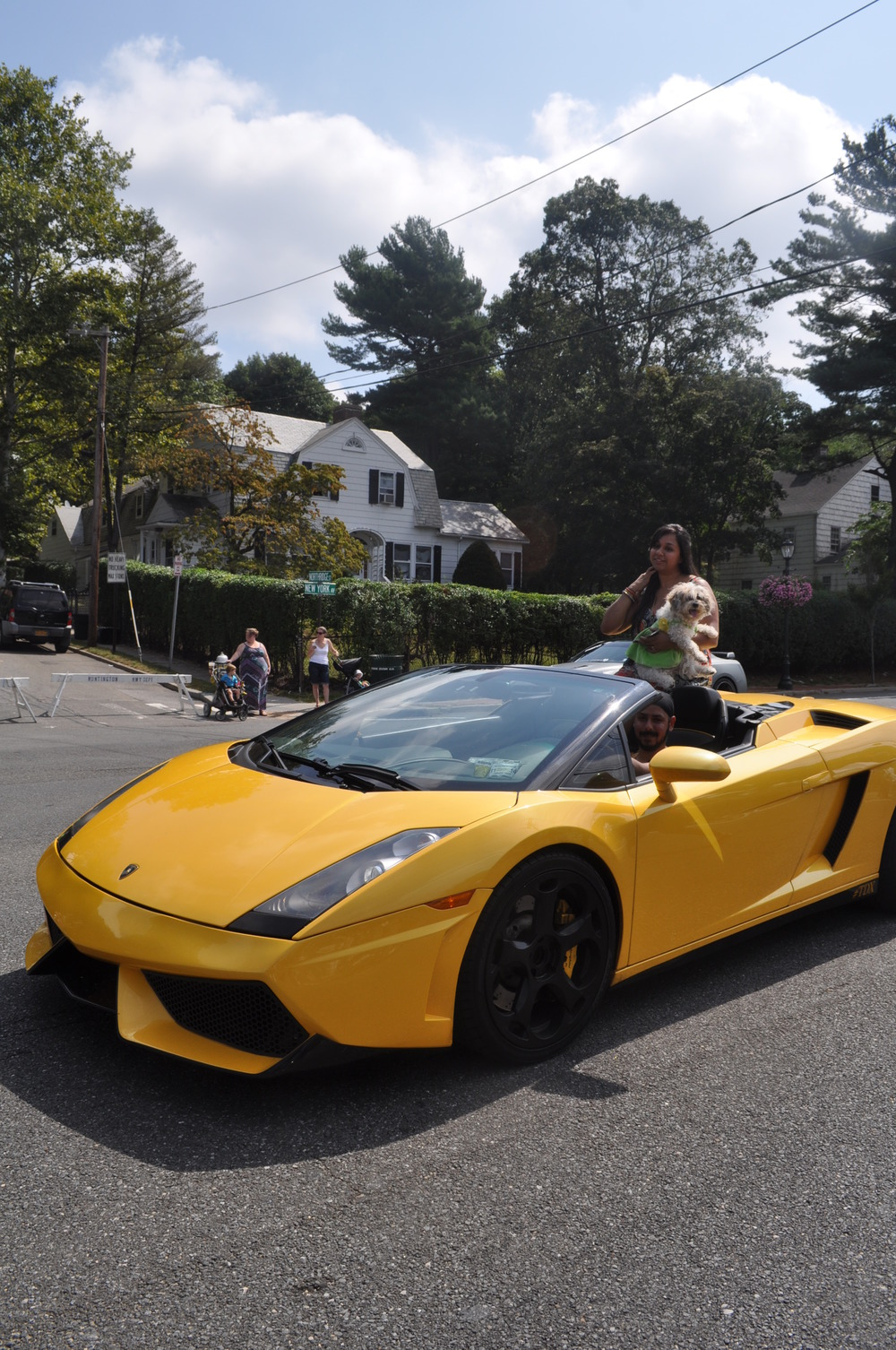 Pooches – and their human companions – make the way down New York Avenue in style in a bright-yellow Lamborghini.