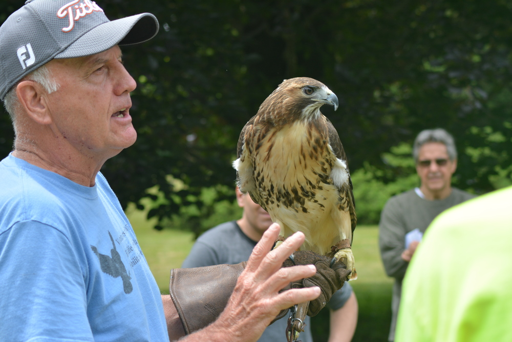 "Jim Jones – of Bayville's Volunteers for Wildlife, a non-profit wildlife hospital and education center – shows off an eagle during a ""Birds of Prey"" presentation put on at Cold Spring Harbor's Wawapek Preserve."