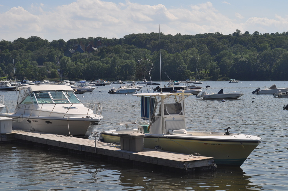 Bucolic Cold Spring Harbor could get a business boost if the Innovation Zone program, which calls for linking Cold Spring Harbor Laboratory to the LIRR by a new shuttle-bus service, gets off the ground.