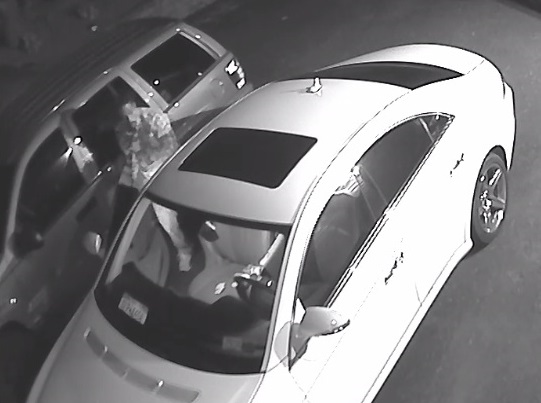 Suffolk police say a man broke into a car parked on Northcote Drive in Melville on Aug. 6 and stole miscellaneous items.