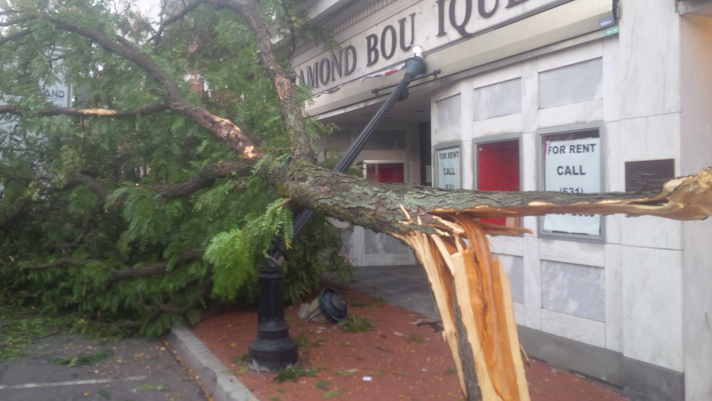 A downed tree broke a lamp post on New York Avenue Thursday, blocking the sidewalk.