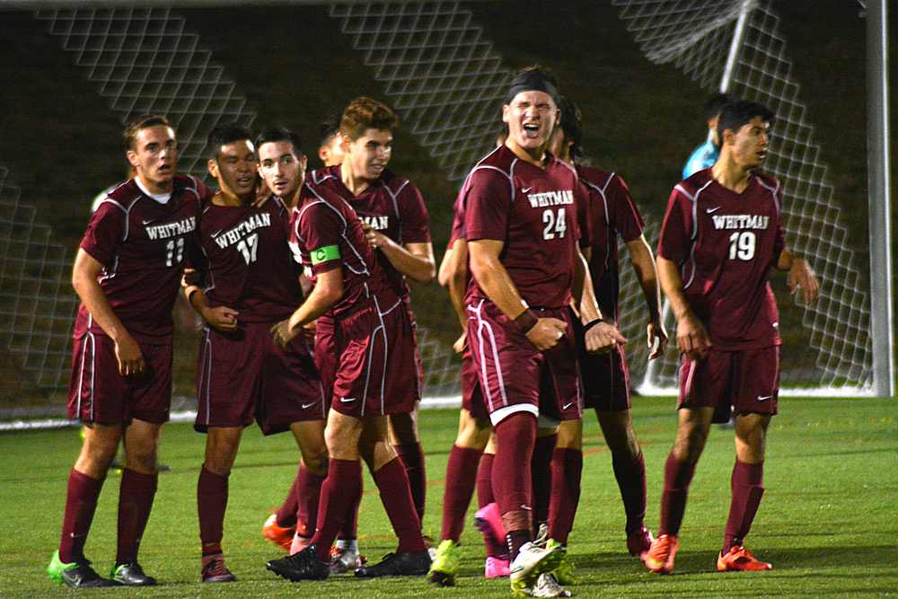 The Walt Whitman Wildcats celebrate a Witman Hernandez (17) goal in the 21st minute of last night's Suffolk Class AA championship game. The second-seeded Wildcats upset top-seeded Brentwood 1-0.