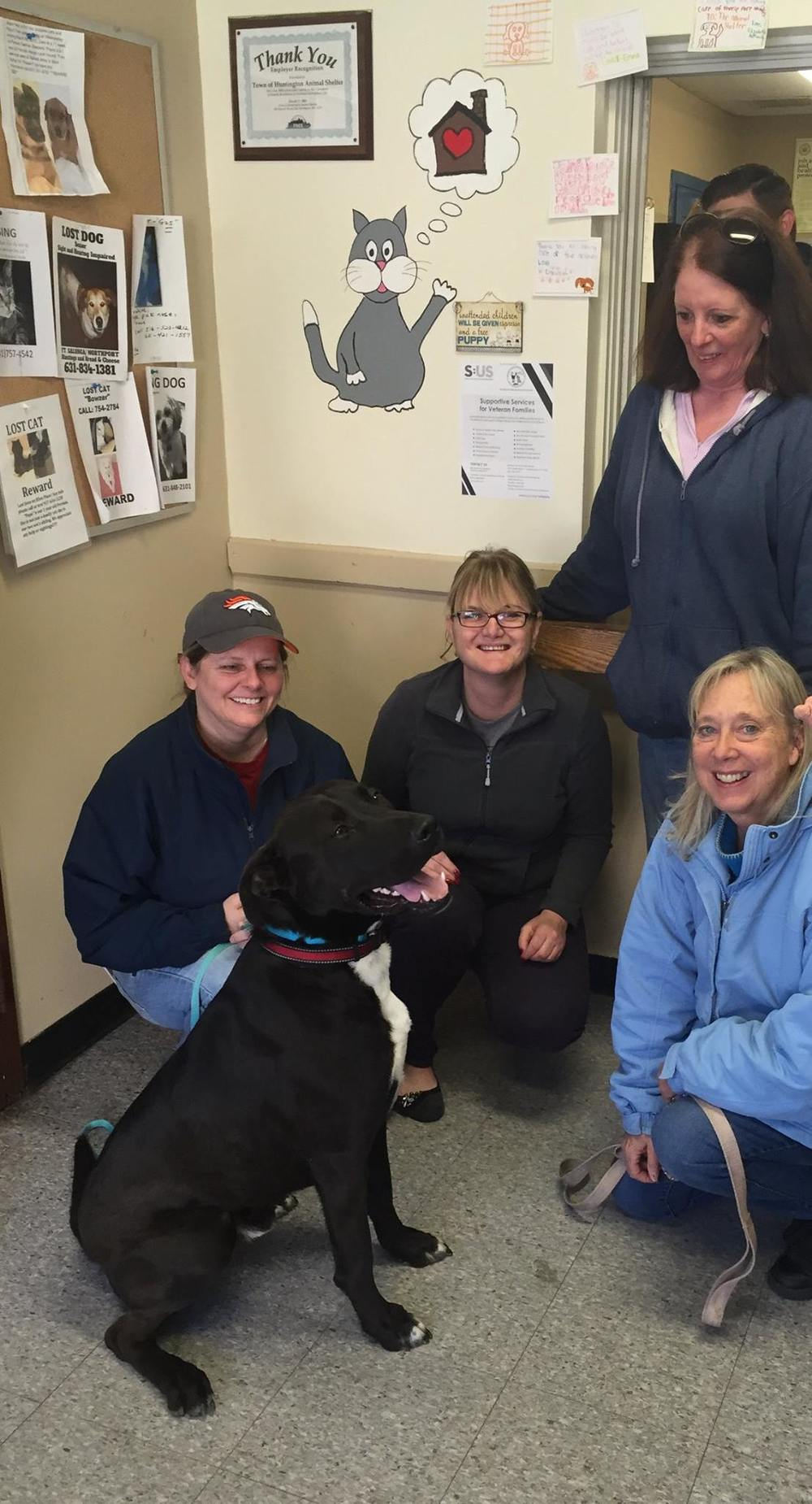 Stewy, a Great Dane mix who lived at the Huntington Animal shelter for over 2 years, was one of seven dogs adopted last week at the shelter. Stewy is pictured with his new owner, Lisa Donelly, left, and shelter volunteers Jodi Record, Jane Barbato, June Johnson. Photo by Facebook/Huntington Animal Shelter
