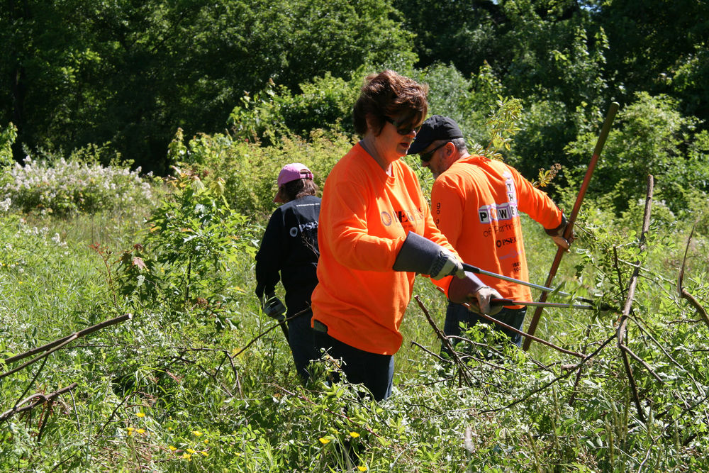Carpenter Farm Park in Greenlawn hosted PSEG Long Island employees who volunteered their time to help restore the park's natural ecosystem, cleaning up trash and clearing an invasive plant species.