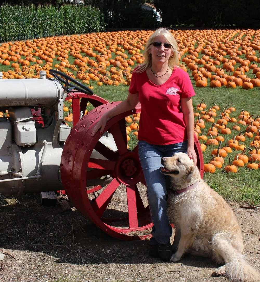Long Islander News photo/Janee Law Jean Schmitt, co-owner of Albert H. Schmitt Family Farm in Dix Hills, and Cassidi, stand in front of the pumpkin field. Schmitt called the scenery the calm before the storm.
