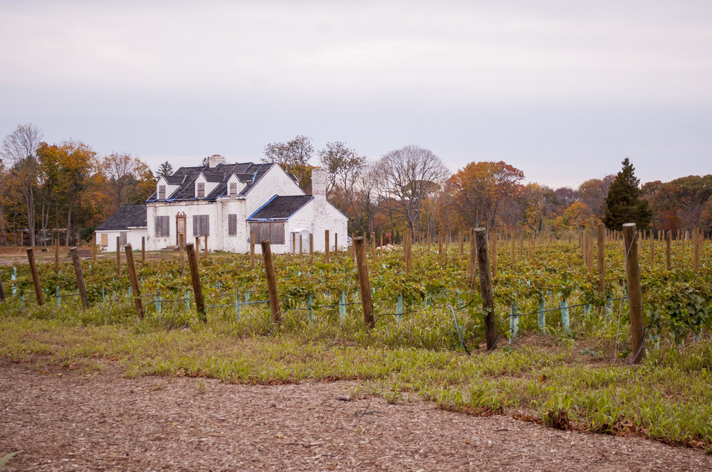The property, pictured, on which Del Vino Vineyard is planned to be built is located at 29 Norwood Road in Northport, adjacent to the property of Norwood Avenue School.
