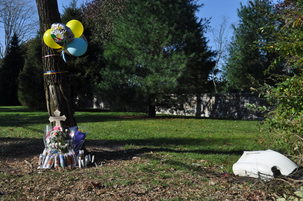 Photo/Suffolk County District Attorney's Office A memorial sits at the Melville crash site at the corner of Colonial Springs Road and Little Neck Road, where 19-year-old Carla Vanessa Flores was killed in a fatal crash on Nov. 1, 2014.