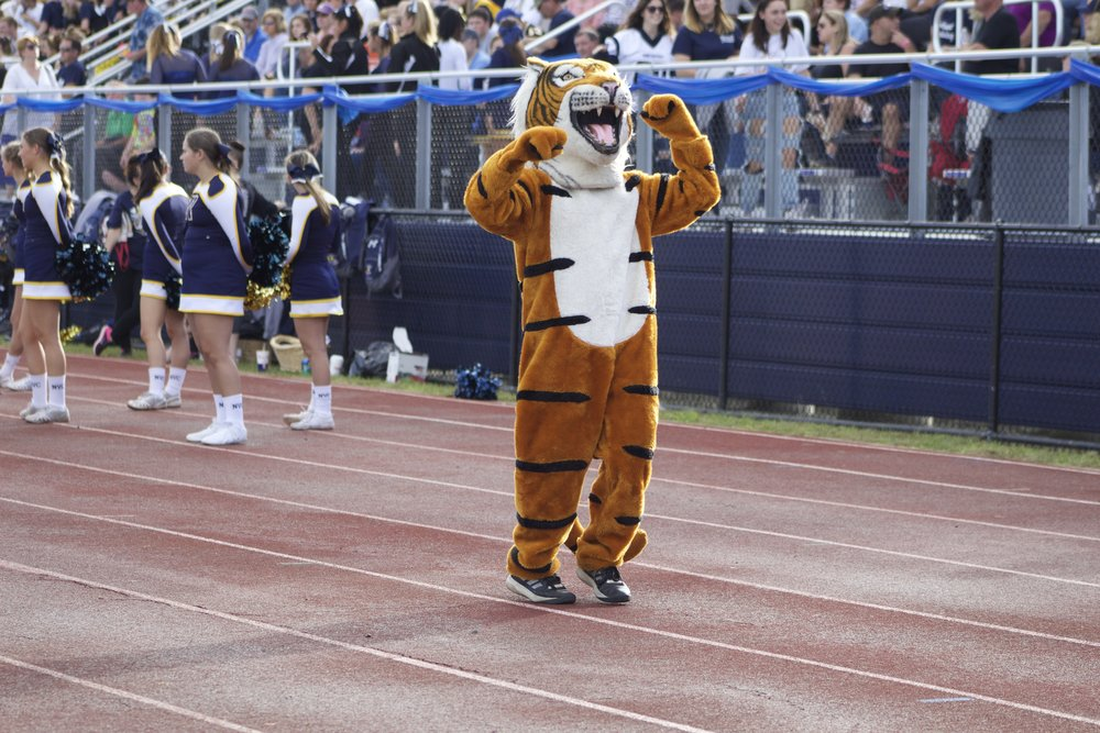 The Northport Tiger mascot fist pumps to rally the crowd at Saturday's homecoming football game.   Long Islander News Photo/Janee Law