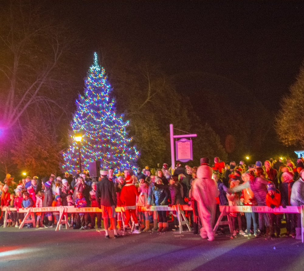 families flocked to northport village park on friday to watch the tree lighting and meet santa