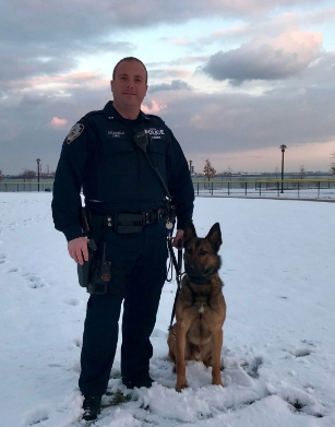 NYPD officer Michael Colangelo, pictured with his canine partner Jimbo, was killed in a car crash upstate on Sunday.   (Photo/Twitter/NYPD Special Ops)
