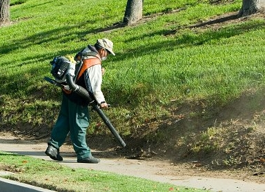 A group of Huntington residents are asking the town board to go further with its proposal to further limit the use of gas-powered leaf blowers on Sundays and legal holidays.   (Photo/Facebook/Huntington CALM)