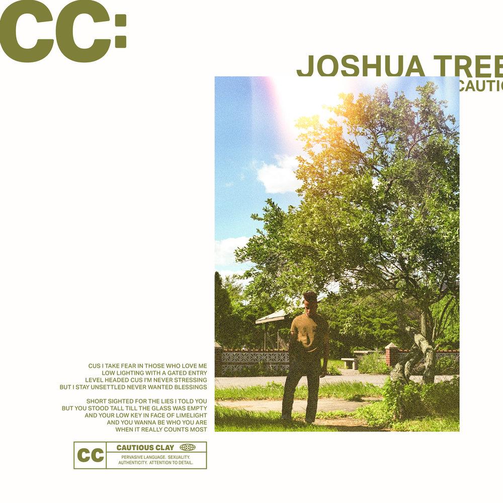 JOSHUA TREE FINAL.jpg