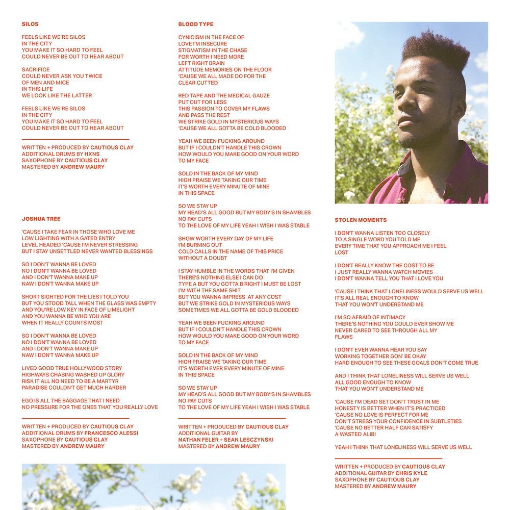 VINYL LP INSERT1.jpg
