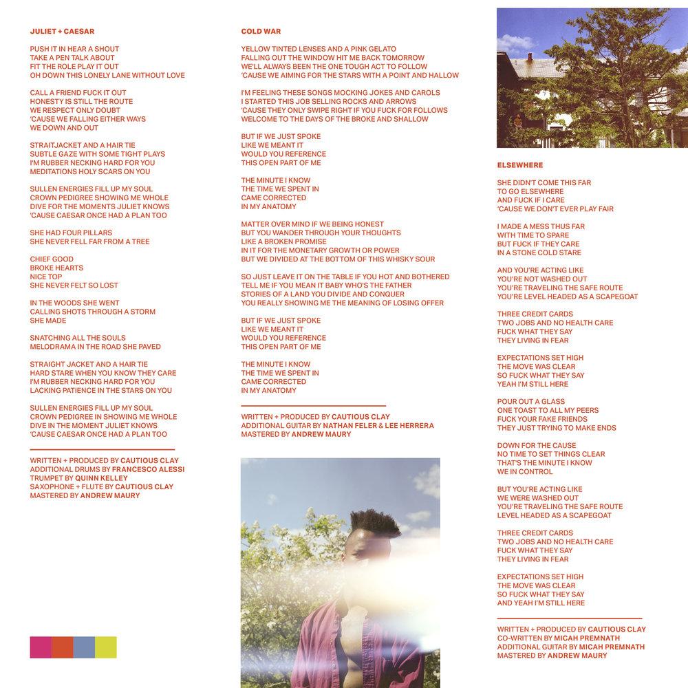 VINYL LP INSERT2.jpg