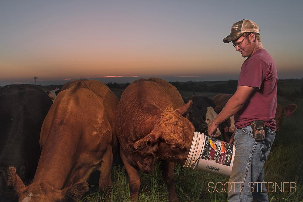 Kansas cattle rancher