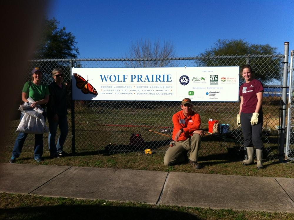 Westside Wolf Prairie - Jaime Gonzalez.JPG