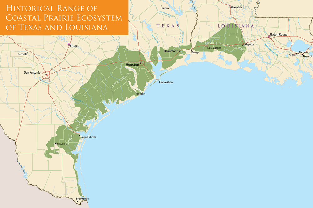 Historic range of the coastal prairie ecosystem.