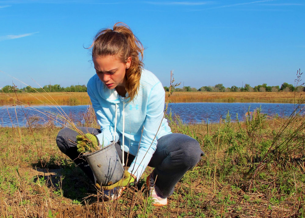 We Restore Prairie & Wetlands  -