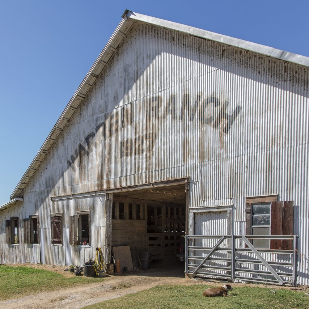 Warren Ranch -