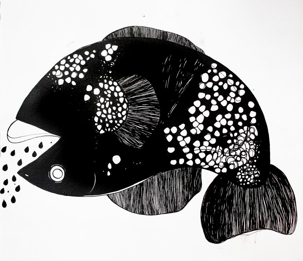 Paula Rivera, Fish, 2016 (1).JPG