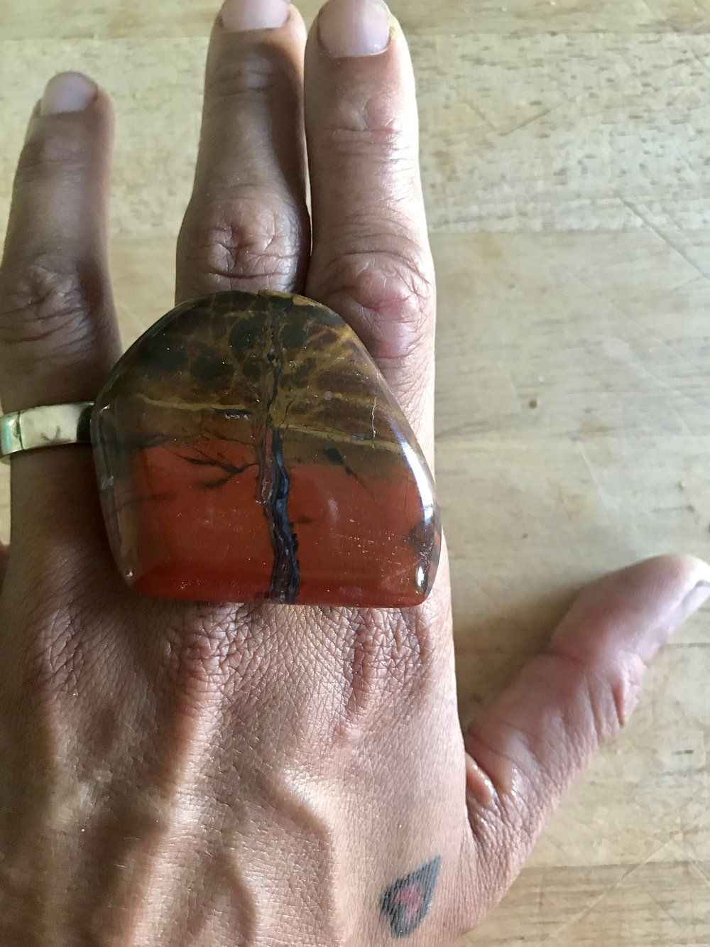 picture jasper on hand