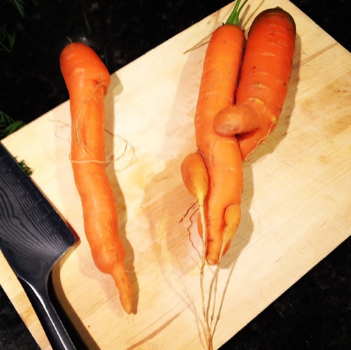 ugly carrot love <3