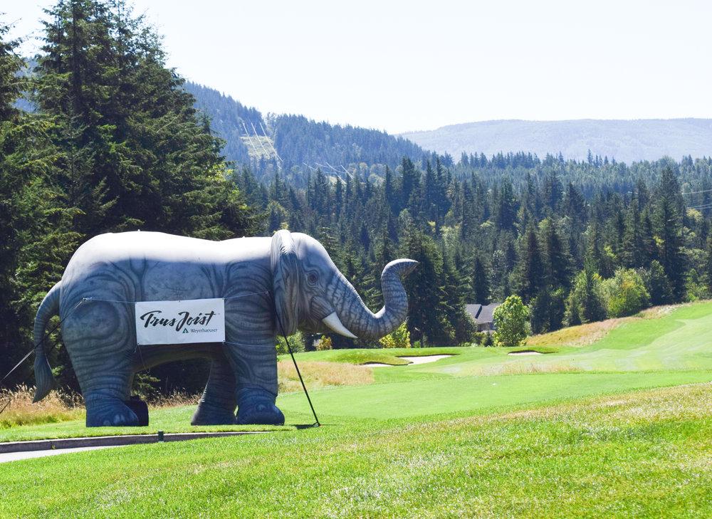MBA Golf Tournament 2016