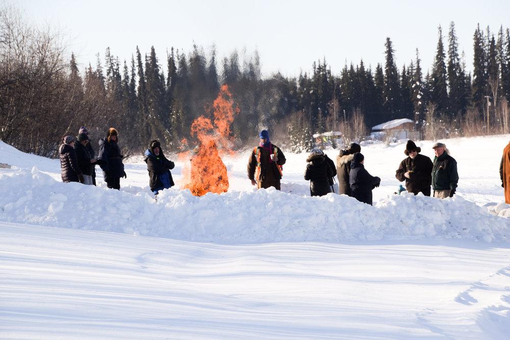 Iditarod 2017