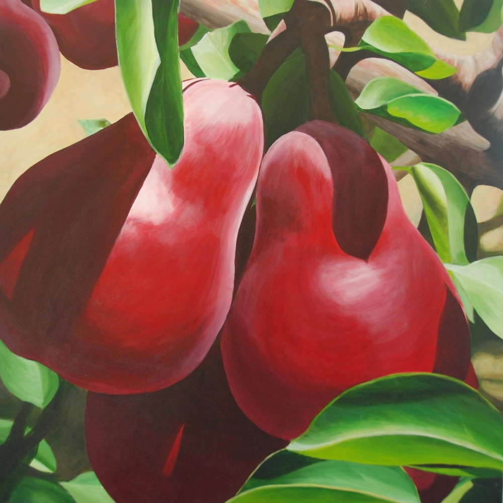 """Red Pears"""
